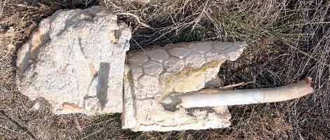 Fragmenty olejové hadí lampy